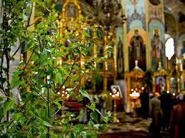 Pourquoi les églises sont-elles décorées de branches de bouleau le jour de la Pentecôte ?