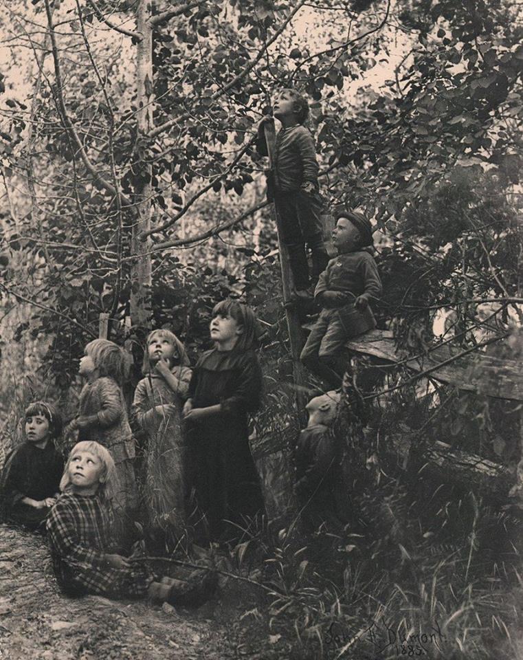 Laurence Guillon: Les  enfants russes écoutent les oiseaux