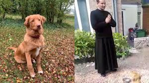 Pastis, le chien de la paroisse de la cathédrale d'Amiens, ne mange pas avant la fin du bénédicité